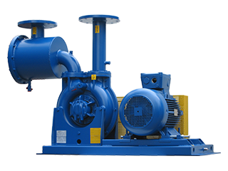 ATEX Cat. 2G Biogas booster with filter